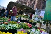 Les fleurs sont de retour sur les marchés