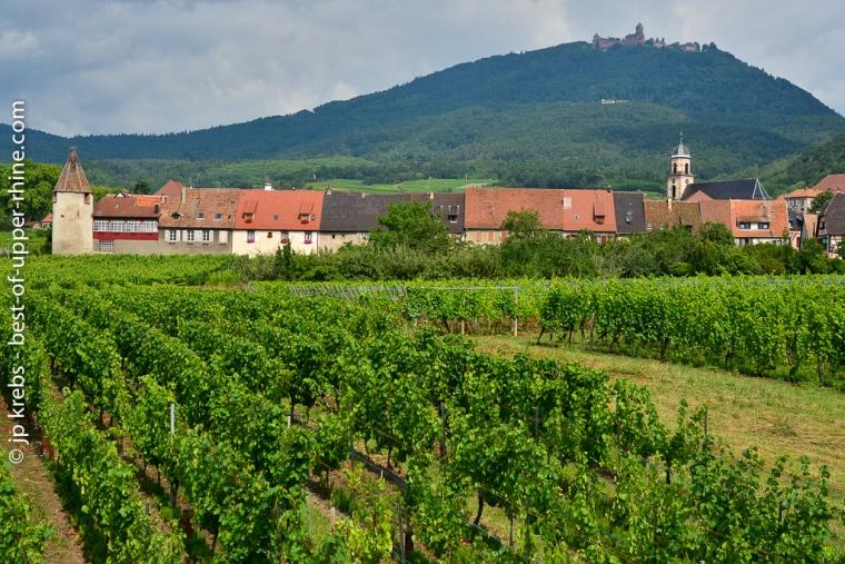 Le Haut-Koenigsbourg vu depuis le village de St-Hippolyte