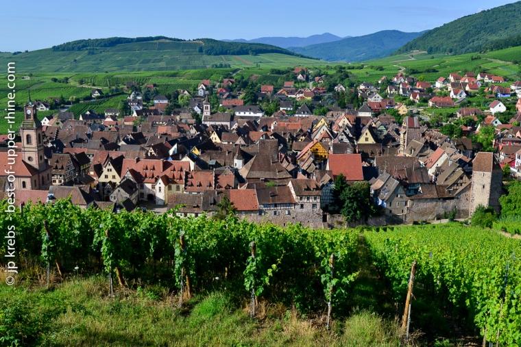 Vue générale de Riquewihr du haut du coteau du Schoenenbourg (Alsace Grand Cru)