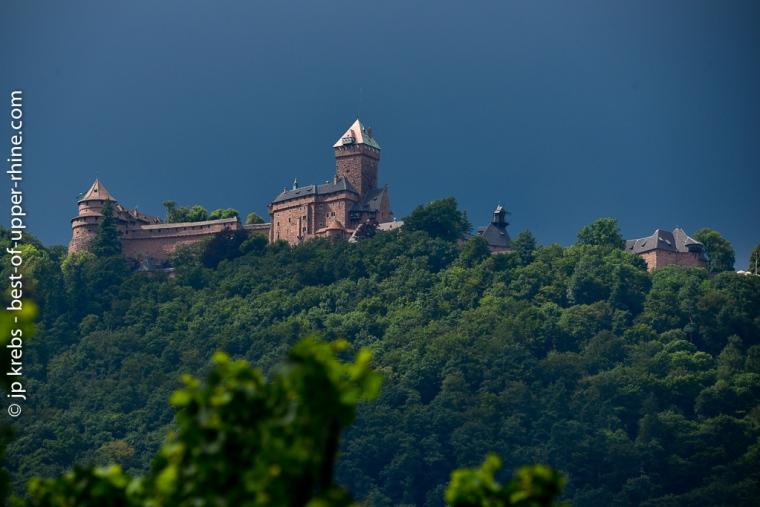 La silhouette du Haut-Koenigsbourg vue des vignes de St-Hippolyte un jour d'orage.