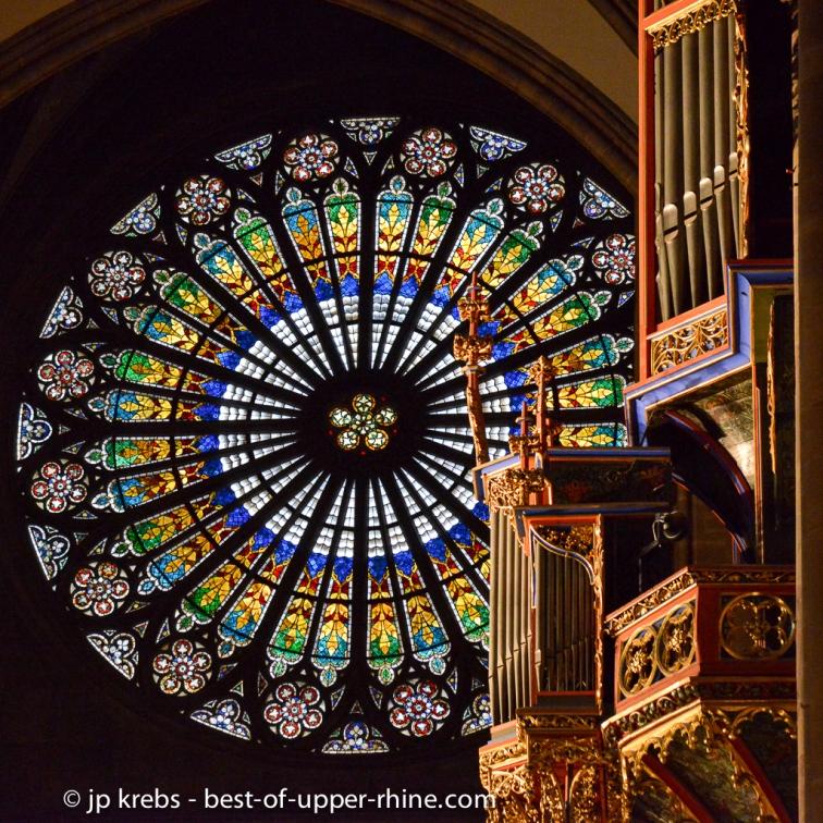 La nef de la cathédrale Notre-Dame à Strasbourg. Rosace et orgue en nid d'hirondelle.