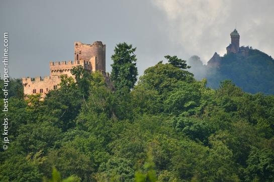 Château de Kintzheim en Alsace. Château du Haut-Koenigsbourg en arrière plan.