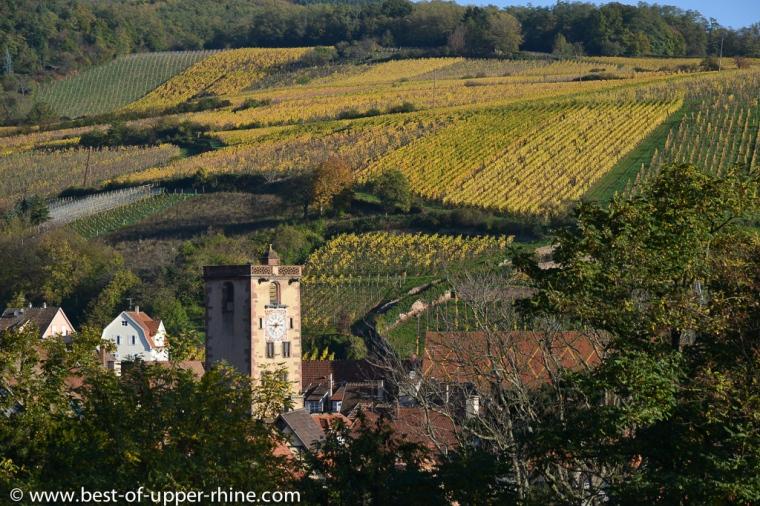 Ribeauvillé, charmante petite ville médiévale voisine de Riquewihr.
