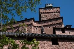Donjon du château du Haut-Koenigsbourg à la naissance des feuilles du marronier