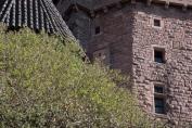 Donjon du château du Haut-Koenigsbourg à la naissance des feuilles