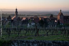 Vue sur Riquewihr, le Dolder et le clocher