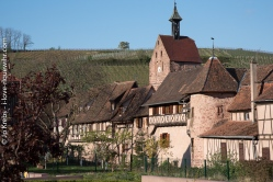 Riquewihr, la tour du Dolder et le rempart de l'an 1500.