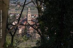 Vue sur le village de Riquewihr