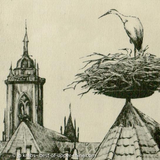 Cigogne sur les toits de Colmar. Dessin ancien.