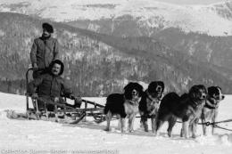 1915 – 1918 – Avec les chiens de traîneau dans les Vosges(2)