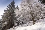 Paysage de neige entre le Tanet et le lac Vert