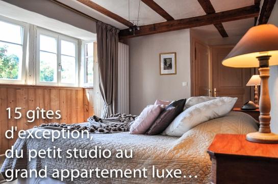 Le Grand Cerf, grand appartement luxe pour 4 personnes sur les remparts de Riquewihr.