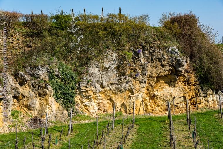 Mittelbergheim carrière de calcaire