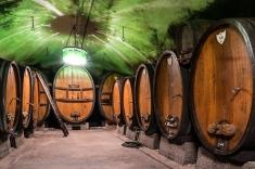 Caves Ouvertes à Mittelbergheim : la cave de vieillissement du domaine WITTMANN
