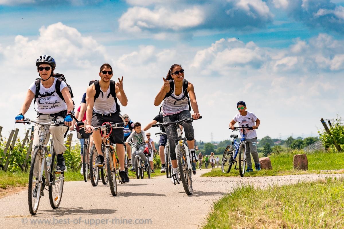 Slow-Up Alsace 2016, sur la route du vin à vélo, à pied ou en trottinette !