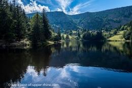 Escapade dans les Vosges, au lac desTruites