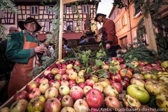 Les Äpfelbisser œuvrent pour la préservation des vergers et des arbres fruitiers isolés de variétés anciennes dont quelque 120 espèces de pommiers ont été répertoriées dans leur secteur !