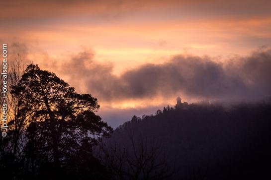 Lever de soleil sur le château du Haut-Koenigsbourg observé depuis le gîte du Randonneur à La Vancelle…